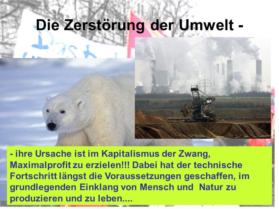 Die Zerstörung der Umwelt - - ihre Ursache ist im Kapitalismus der Zwang, Maximalprofit zu erzielen!!! Dabei hat der technische Fortschritt längst die