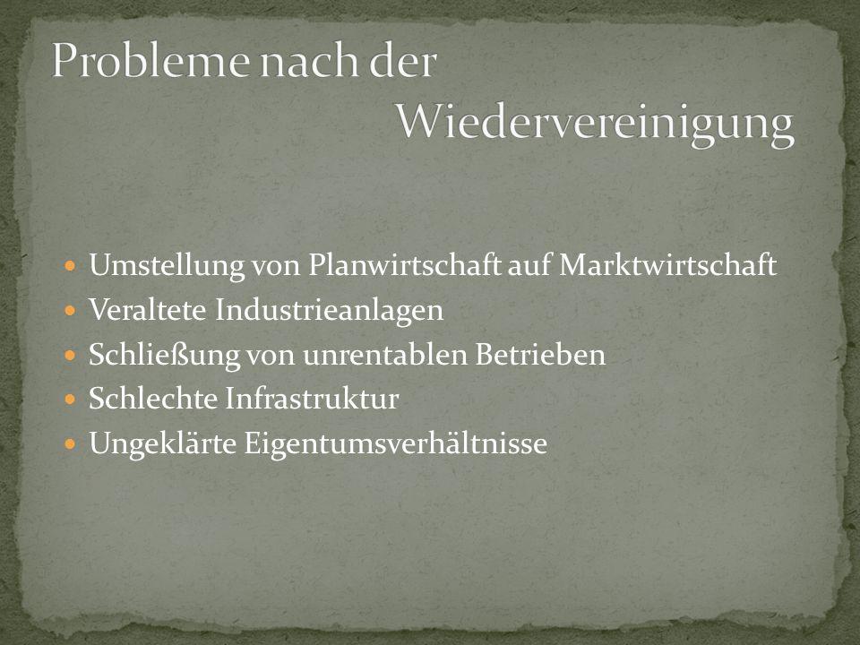 Umstellung von Planwirtschaft auf Marktwirtschaft Veraltete Industrieanlagen Schließung von unrentablen Betrieben Schlechte Infrastruktur Ungeklärte Eigentumsverhältnisse