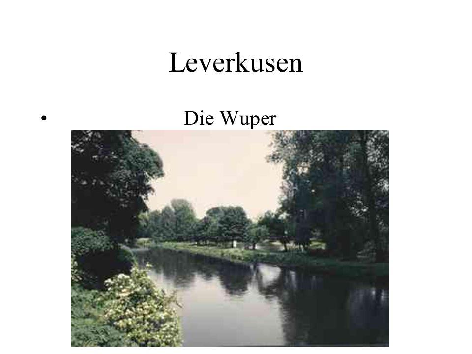 Leverkusen Die Wuper
