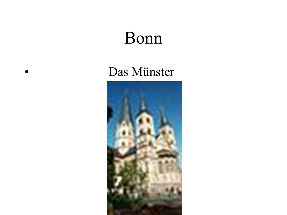 Bonn Das Münster