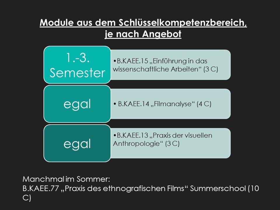 """Module aus dem Schlüsselkompetenzbereich, je nach Angebot B.KAEE.15 """"Einführung in das wissenschaftliche Arbeiten (3 C) 1.-3."""