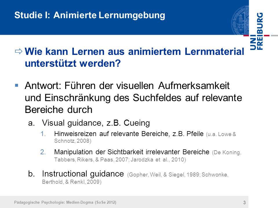 Studie I: Animierte Lernumgebung  Wie kann Lernen aus animiertem Lernmaterial unterstützt werden?  Antwort: Führen der visuellen Aufmerksamkeit und