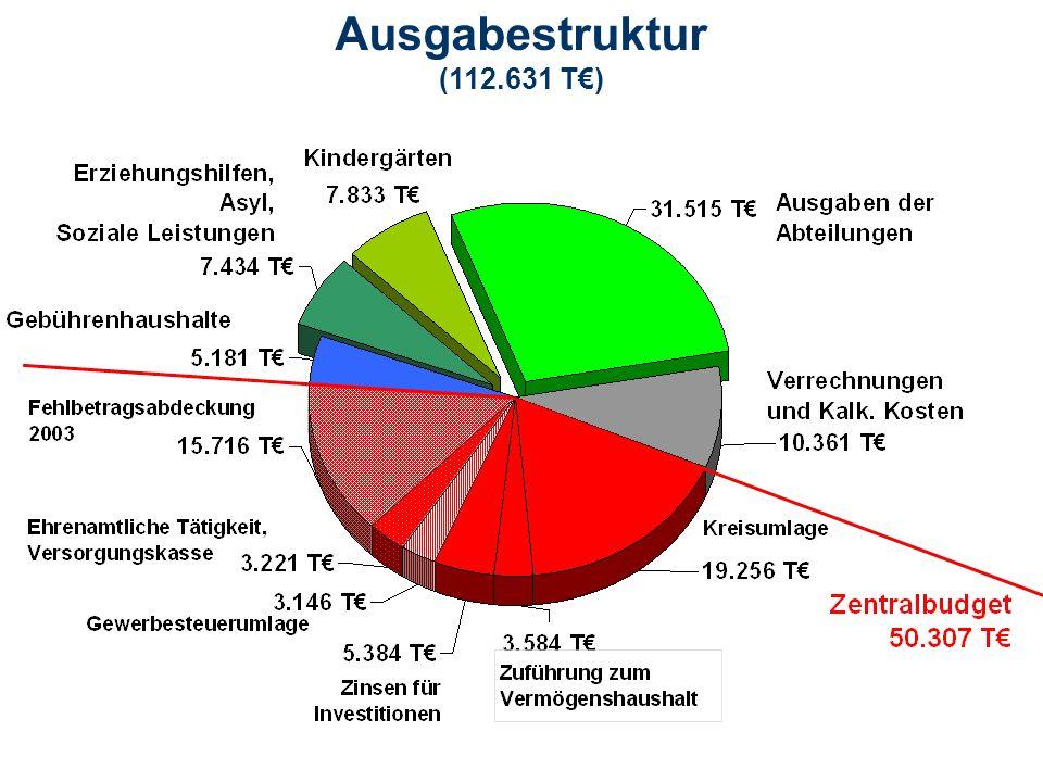 Ausgabestruktur (112.631 T€)