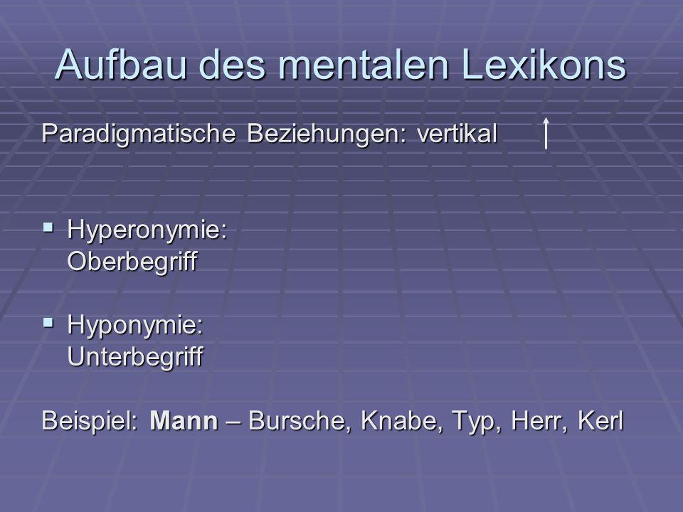 Aufbau des mentalen Lexikons Paradigmatische Beziehungen: vertikal  Hyperonymie: Oberbegriff  Hyponymie: Unterbegriff Beispiel: Mann – Bursche, Knabe, Typ, Herr, Kerl
