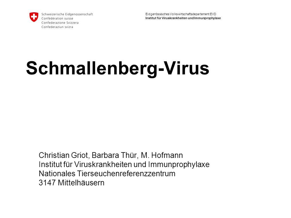 Eidgenössisches Volkswirtschaftsdepartement EVD Institut für Viruskrankheiten und Immunprophylaxe Schmallenberg-Virus Christian Griot, Barbara Thür, M.