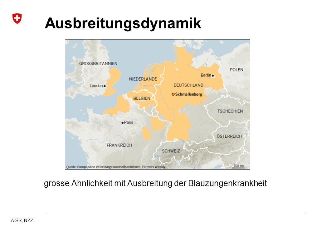 Ausbreitungsdynamik grosse Ähnlichkeit mit Ausbreitung der Blauzungenkrankheit A Six, NZZ