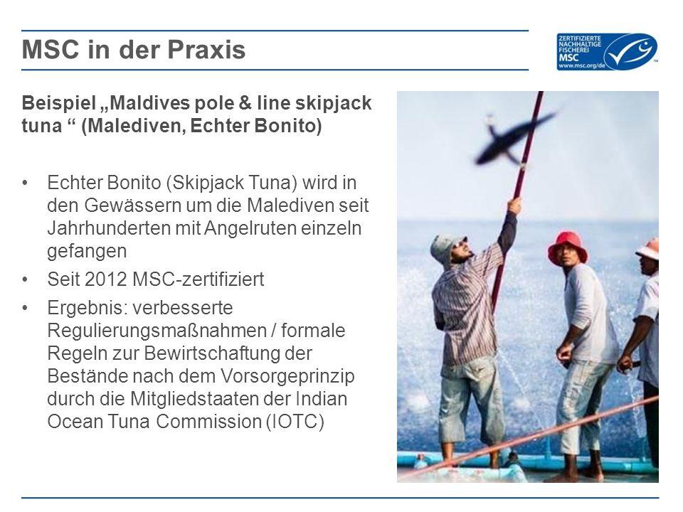 """Beispiel """"Maldives pole & line skipjack tuna (Malediven, Echter Bonito) Echter Bonito (Skipjack Tuna) wird in den Gewässern um die Malediven seit Jahrhunderten mit Angelruten einzeln gefangen Seit 2012 MSC-zertifiziert Ergebnis: verbesserte Regulierungsmaßnahmen / formale Regeln zur Bewirtschaftung der Bestände nach dem Vorsorgeprinzip durch die Mitgliedstaaten der Indian Ocean Tuna Commission (IOTC) MSC in der Praxis"""