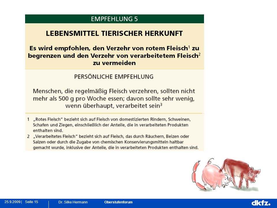 Seite 1525.9.2009 | Dr. Silke Hermann Oberstufenforum