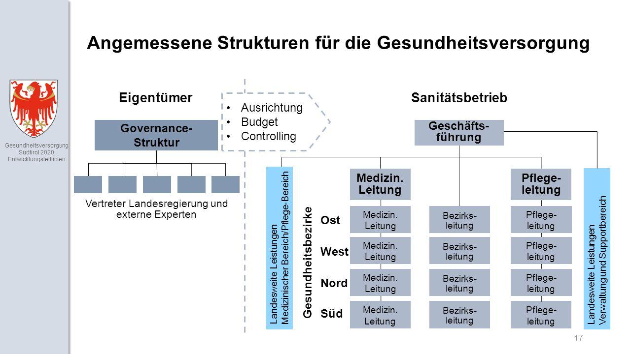 Gesundheitsversorgung Südtirol 2020 Entwicklungsleitlinien 17 Angemessene Strukturen für die Gesundheitsversorgung Eigentümer Governance- Struktur Vertreter Landesregierung und externe Experten Sanitätsbetrieb Geschäfts- führung Medizin.
