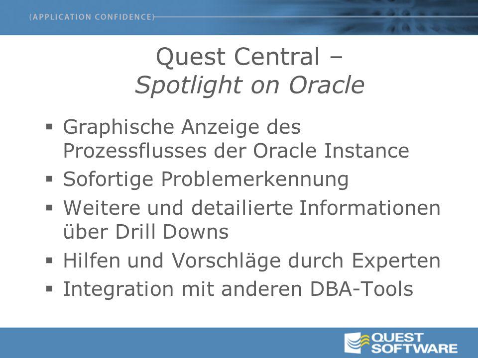 Quest Central – Spotlight on Oracle  Graphische Anzeige des Prozessflusses der Oracle Instance  Sofortige Problemerkennung  Weitere und detailierte