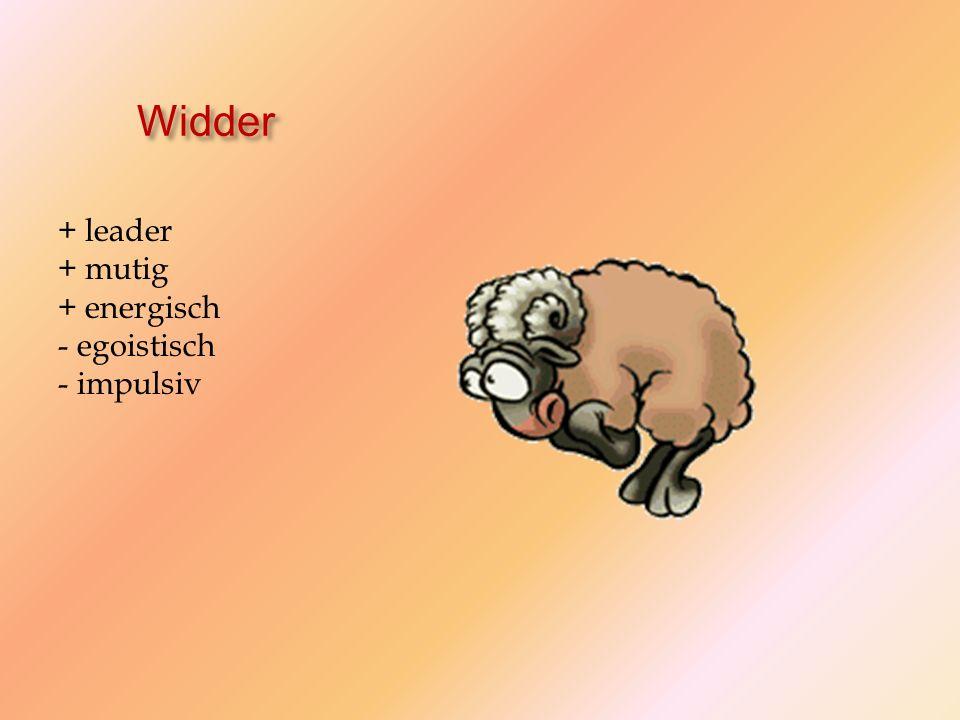 Widder + leader + mutig + energisch - egoistisch - impulsiv