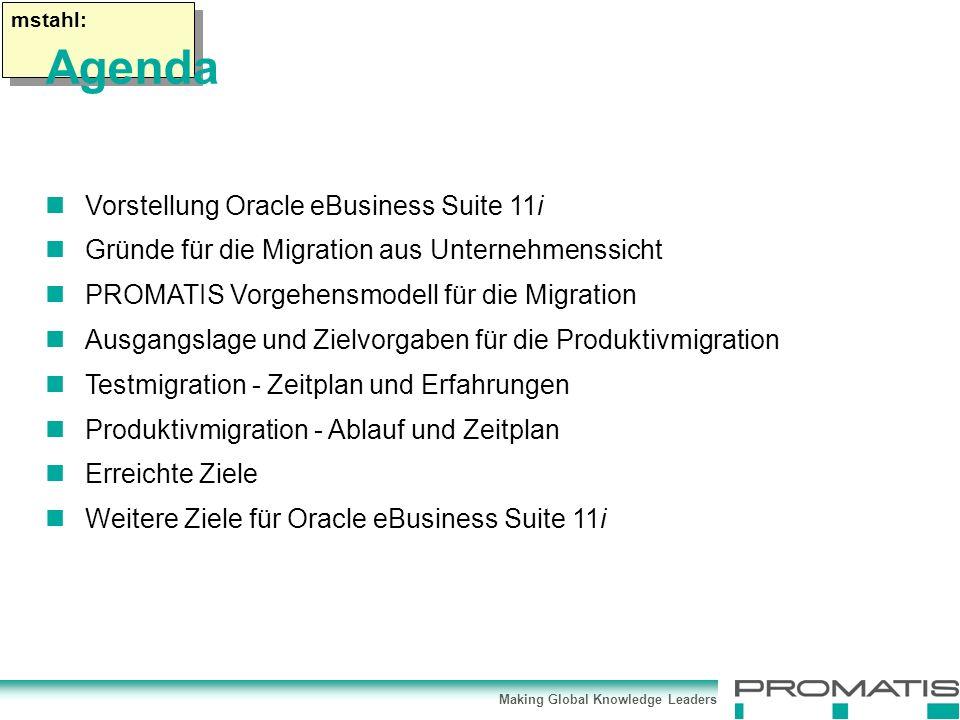 Making Global Knowledge Leaders mstahl: Vorstellung Oracle eBusiness Suite 11i Gründe für die Migration aus Unternehmenssicht PROMATIS Vorgehensmodell für die Migration Ausgangslage und Zielvorgaben für die Produktivmigration Testmigration - Zeitplan und Erfahrungen Produktivmigration - Ablauf und Zeitplan Erreichte Ziele Weitere Ziele für Oracle eBusiness Suite 11i Agenda