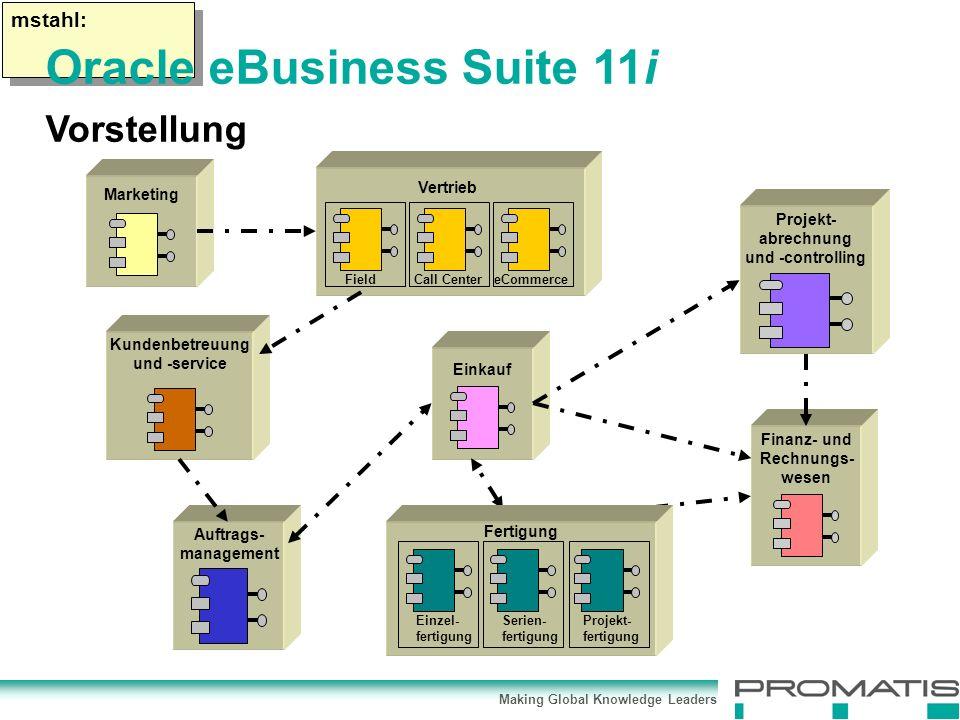 Making Global Knowledge Leaders mstahl: Marketing FieldCall CentereCommerce Vertrieb Einkauf Auftrags- management Finanz- und Rechnungs- wesen Projekt- abrechnung und -controlling Kundenbetreuung und -service Einzel- fertigung Serien- fertigung Projekt- fertigung Fertigung Oracle eBusiness Suite 11i Vorstellung