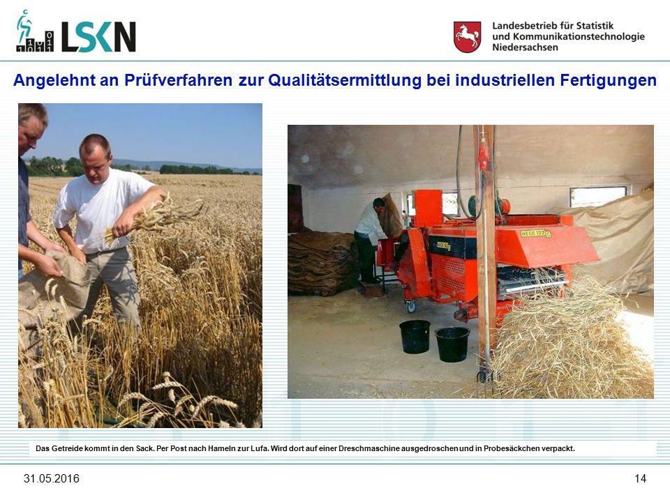 31.05.201614 Das Getreide kommt in den Sack. Per Post nach Hameln zur Lufa.