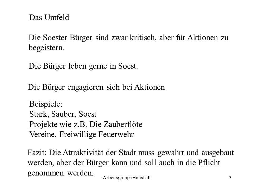 Arbeitsgruppe Haushalt3 Das Umfeld Die Soester Bürger sind zwar kritisch, aber für Aktionen zu begeistern.