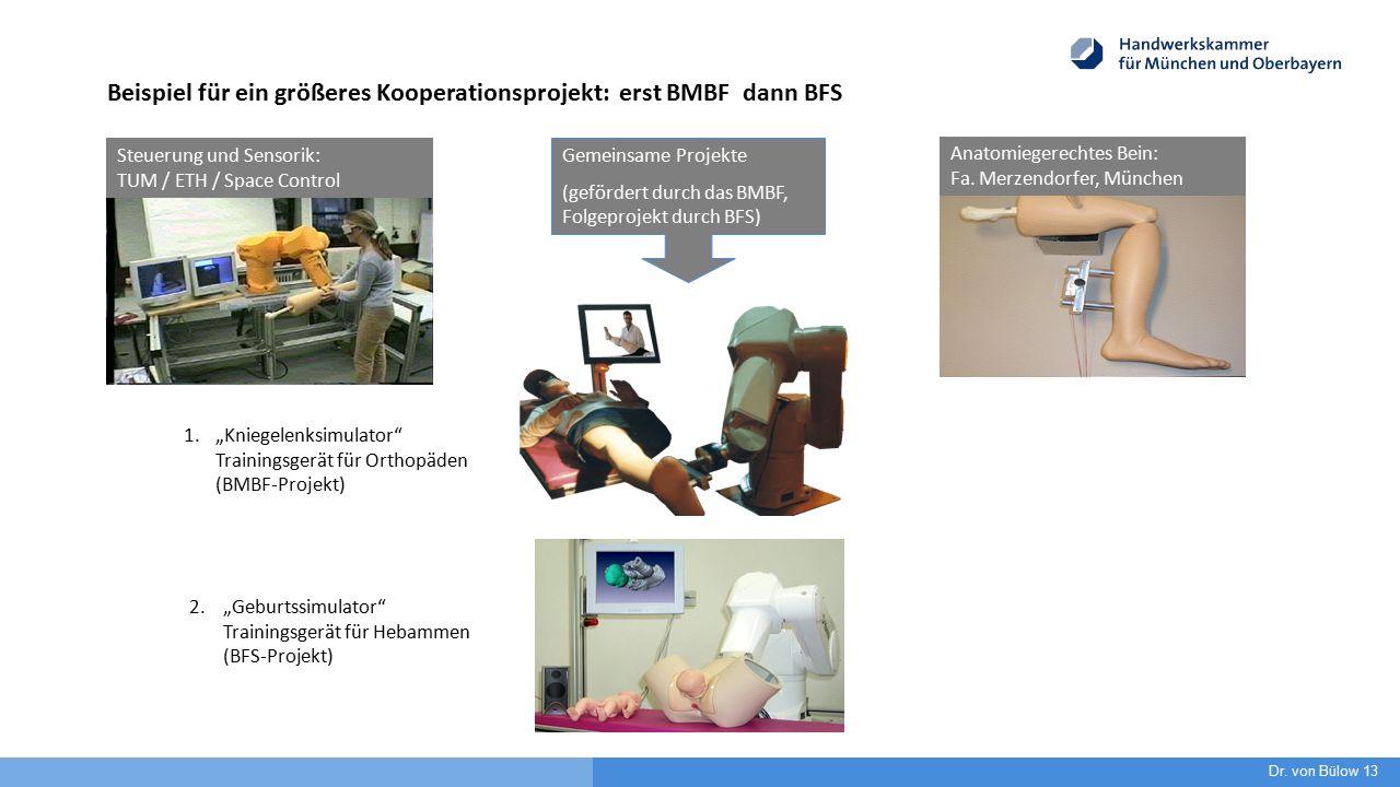 Beispiel für ein größeres Kooperationsprojekt: erst BMBF dann BFS Anatomiegerechtes Bein: Fa. Merzendorfer, München Steuerung und Sensorik: TUM / ETH