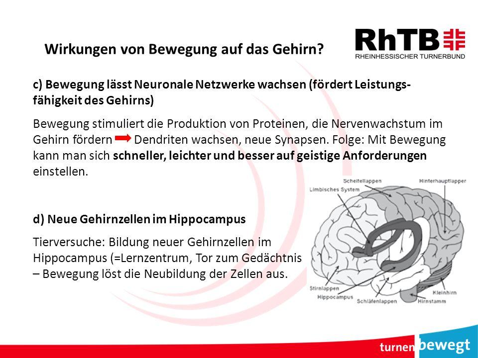 Wirkungen von Bewegung auf das Gehirn.