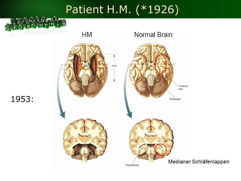 Patient H.M. (*1926) 1953: Medianer Schläfenlappen