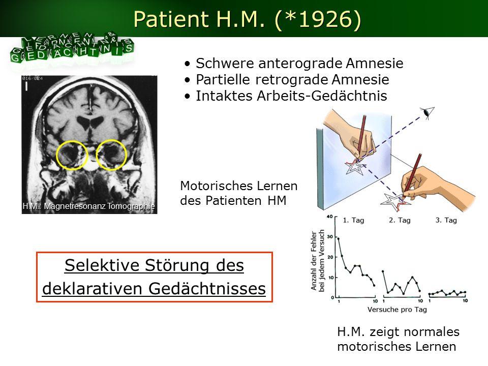 Motorisches Lernen des Patienten HM H.M.