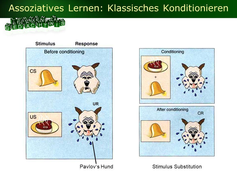 Assoziatives Lernen: Klassisches Konditionieren Pavlov's HundStimulus Substitution UR