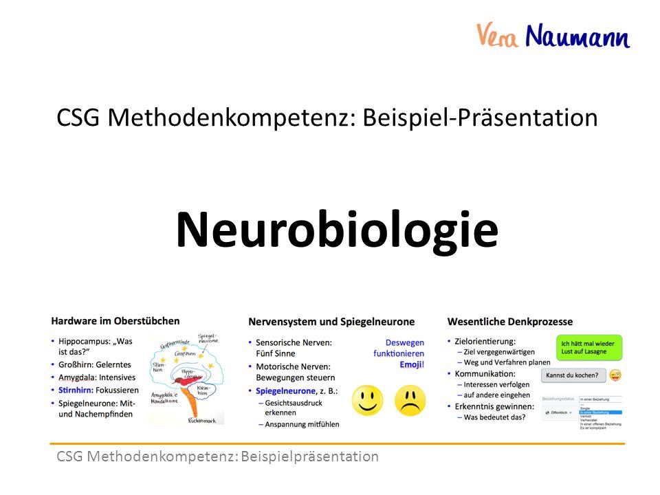 CSG Methodenkompetenz: Beispielpräsentation CSG Methodenkompetenz: Beispiel-Präsentation Neurobiologie