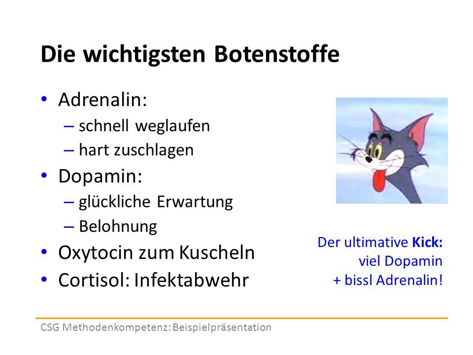 Die wichtigsten Botenstoffe Adrenalin: – schnell weglaufen – hart zuschlagen Dopamin: – glückliche Erwartung – Belohnung Oxytocin zum Kuscheln Cortisol: Infektabwehr CSG Methodenkompetenz: Beispielpräsentation Der ultimative Kick: viel Dopamin + bissl Adrenalin!