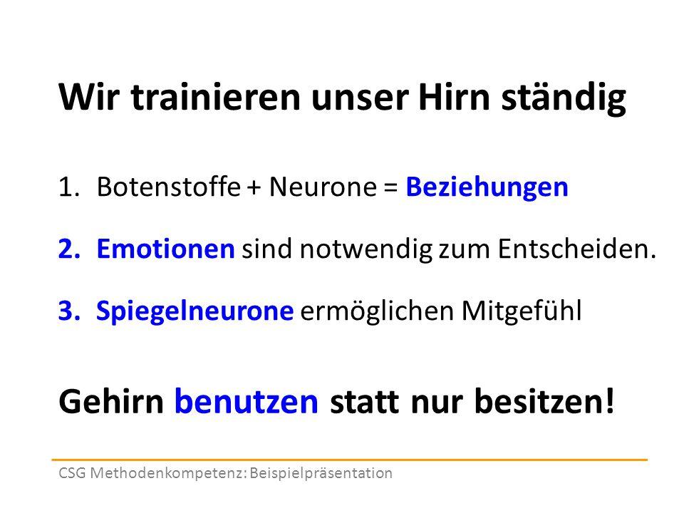 Wir trainieren unser Hirn ständig 1.Botenstoffe + Neurone = Beziehungen 2.Emotionen sind notwendig zum Entscheiden.