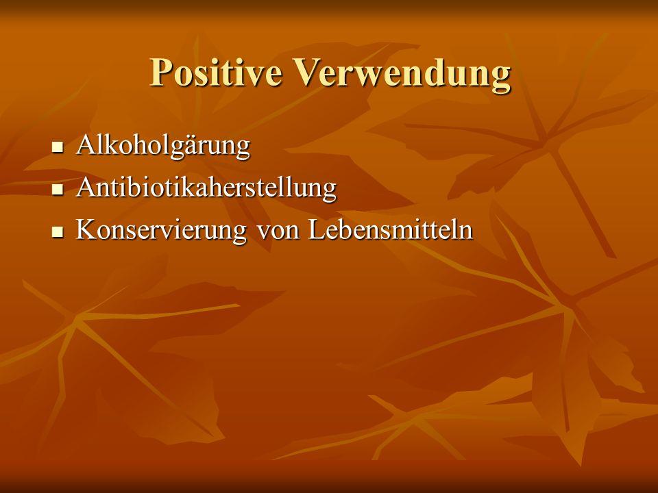 Positive Verwendung Alkoholgärung Alkoholgärung Antibiotikaherstellung Antibiotikaherstellung Konservierung von Lebensmitteln Konservierung von Lebensmitteln