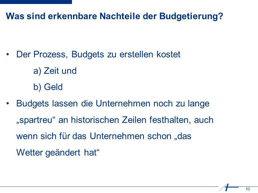 13 Was sind erkennbare Nachteile der Budgetierung.