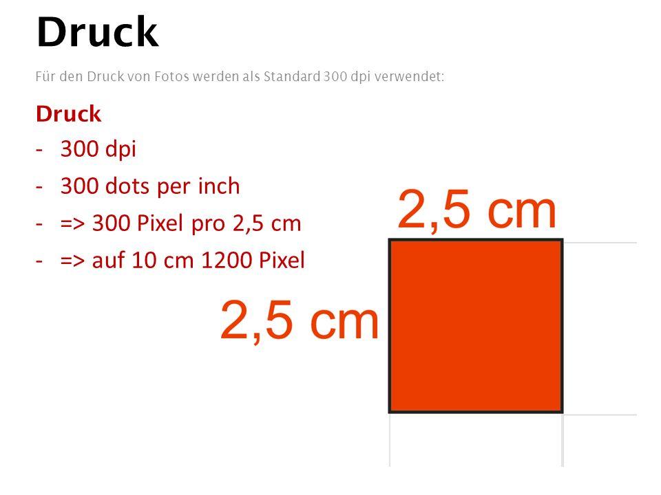 Druck Für den Druck von Fotos werden als Standard 300 dpi verwendet: Druck -300 dpi -300 dots per inch -=> 300 Pixel pro 2,5 cm -=> auf 10 cm 1200 Pixel