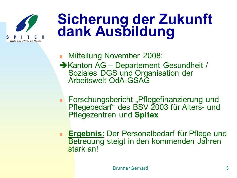 Brunner Gerhard5 Sicherung der Zukunft dank Ausbildung Mitteilung November 2008:  Kanton AG – Departement Gesundheit / Soziales DGS und Organisation