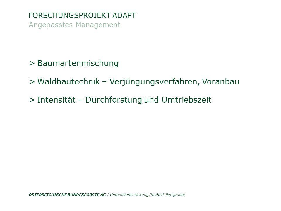 ÖSTERREICHISCHE BUNDESFORSTE AG / Unternehmensleitung /Norbert Putzgruber > Baumartenmischung > Waldbautechnik – Verjüngungsverfahren, Voranbau > Inte