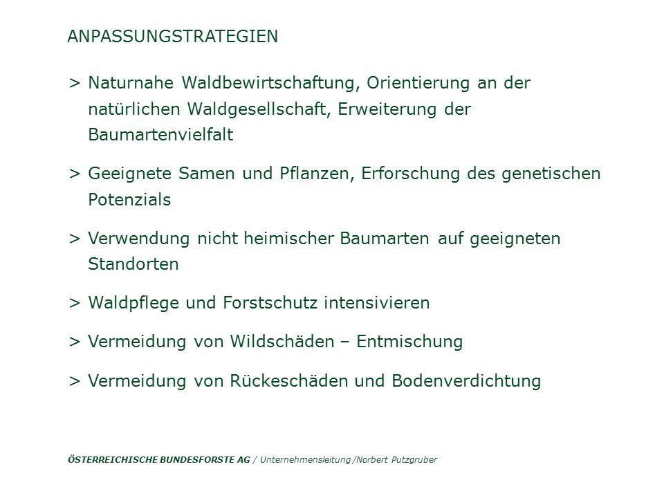 ÖSTERREICHISCHE BUNDESFORSTE AG / Unternehmensleitung /Norbert Putzgruber > Naturnahe Waldbewirtschaftung, Orientierung an der natürlichen Waldgesells