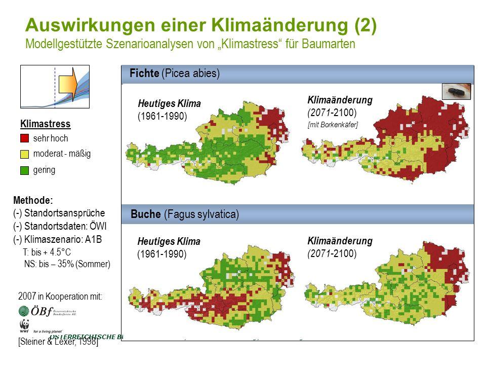 ÖSTERREICHISCHE BUNDESFORSTE AG / Unternehmensleitung /Norbert Putzgruber MUSTERSEITE 6 Baumartenverteilung in Niederösterreich Quelle: ÖWI 2000/2002 Fichte 38 % Nadelholz 54% Alter: 80 Jahre Vorrat: 760 Vfm/ha Grundfläche: 55 m² Höhe: 40 m BHD: 79 cm Douglasie ANPASSUNGSSTRATEGIEN Nicht heimische Baumarten
