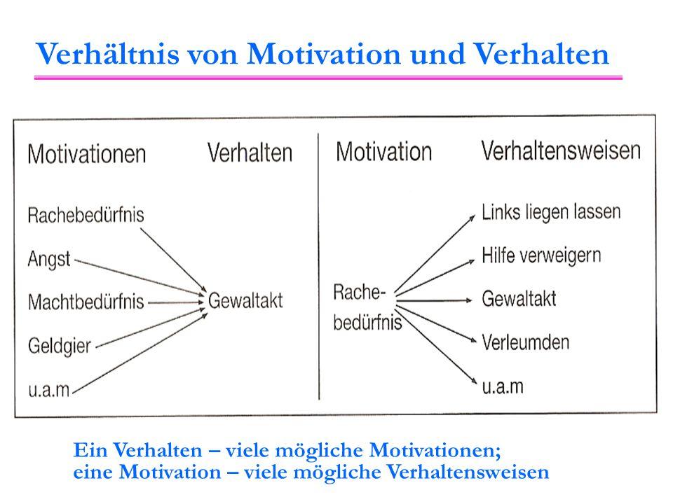 Ein Verhalten – viele mögliche Motivationen; eine Motivation – viele mögliche Verhaltensweisen Verhältnis von Motivation und Verhalten