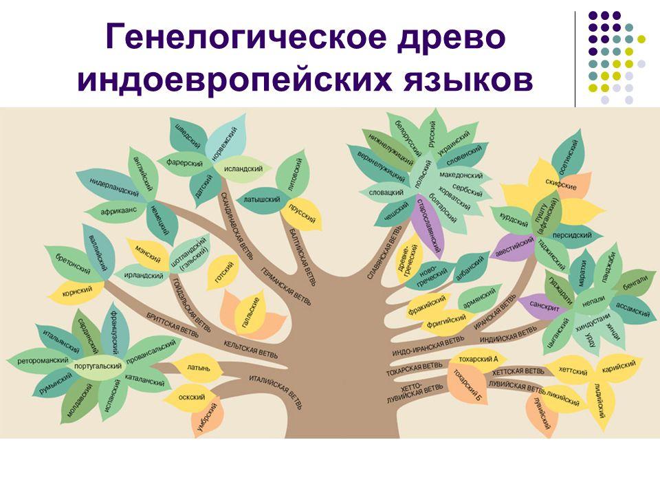 Генелогическое древо индоевропейских языков