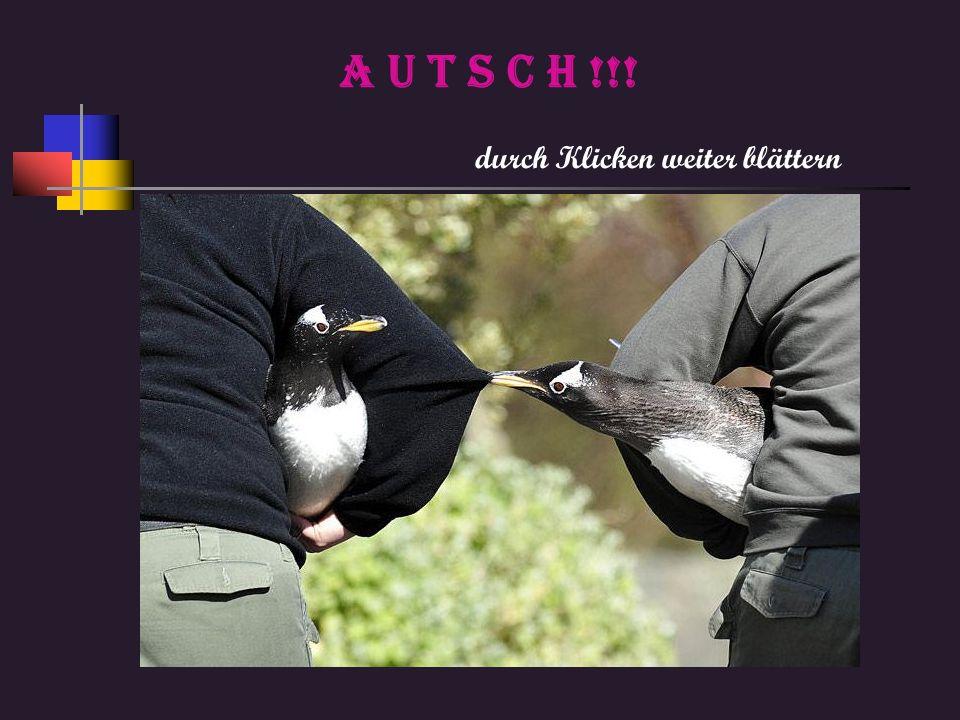 Einfach großartig, diese Präsentationen Von Kurt ENDE Mehr Spaß bei einfach anklicken kurtsschmunzelseitekurtsschmunzelseite