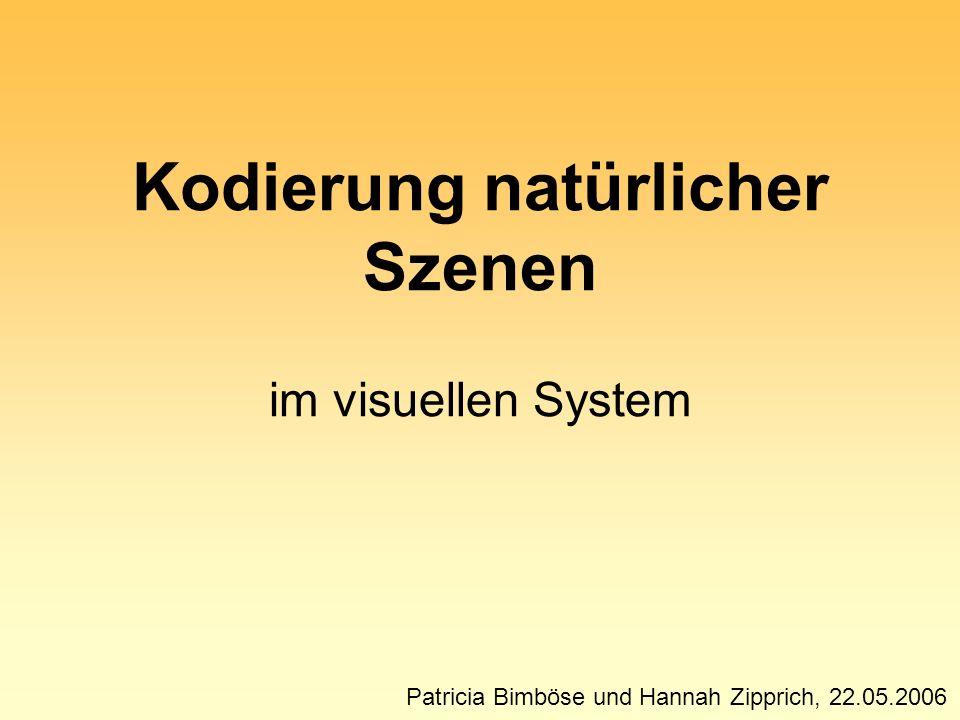 Patricia Bimböse und Hannah Zipprich, 22.05.2006 Kodierung natürlicher Szenen im visuellen System