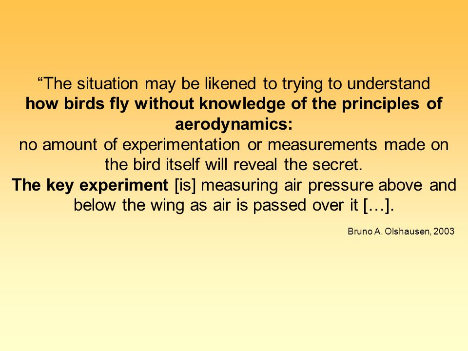"""The situation may be likened to trying to understand how birds fly without knowledge of the principles of aerodynamics: no amount of experimentation"