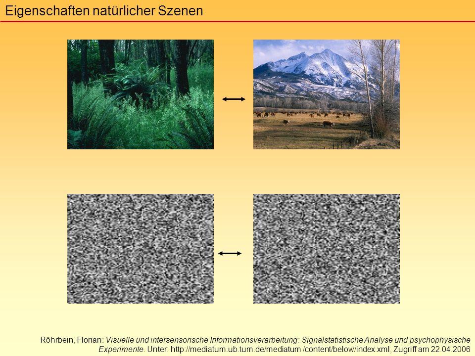 Röhrbein, Florian: Visuelle und intersensorische Informationsverarbeitung: Signalstatistische Analyse und psychophysische Experimente.