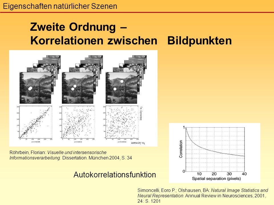 Zweite Ordnung – Korrelationen zwischen Bildpunkten Eigenschaften natürlicher Szenen Röhrbein, Florian: Visuelle und intersensorische Informationsverarbeitung.
