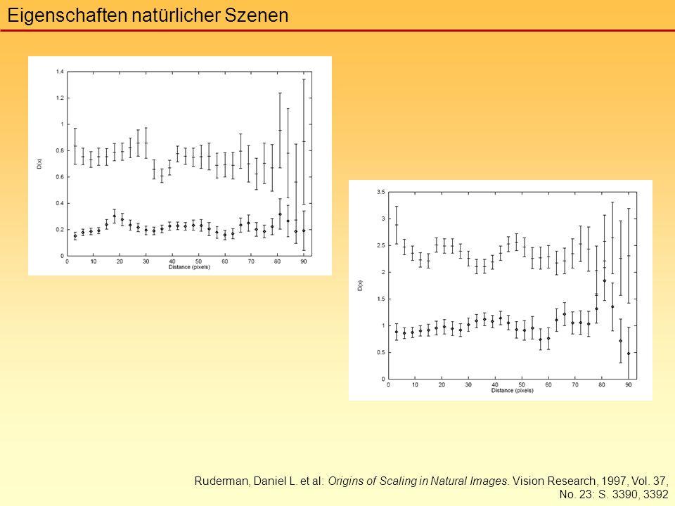 Eigenschaften natürlicher Szenen Ruderman, Daniel L.
