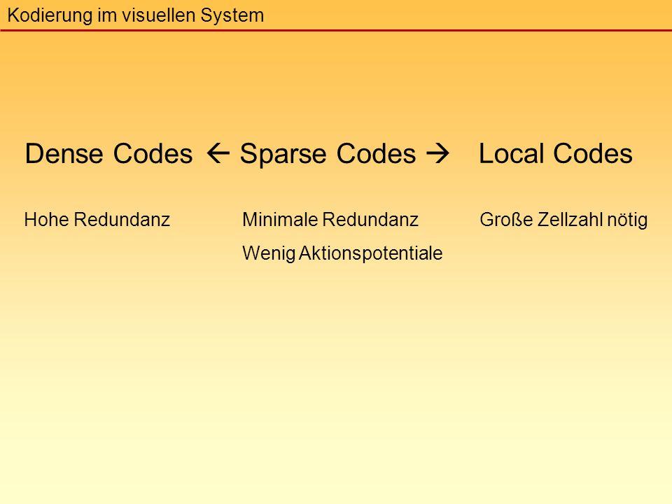  Sparse Codes  Minimale Redundanz Wenig Aktionspotentiale Dense Codes Kodierung im visuellen System Local Codes Hohe RedundanzGroße Zellzahl nötig