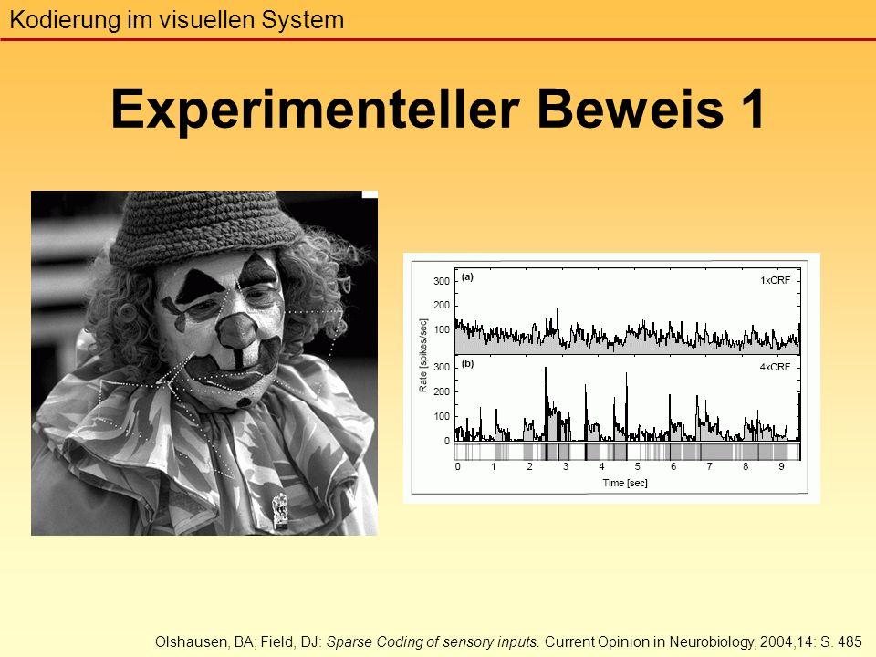 Experimenteller Beweis 1 Kodierung im visuellen System Olshausen, BA; Field, DJ: Sparse Coding of sensory inputs.