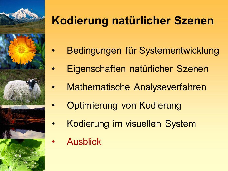Bedingungen für Systementwicklung Eigenschaften natürlicher Szenen Mathematische Analyseverfahren Optimierung von Kodierung Kodierung im visuellen System Ausblick Kodierung natürlicher Szenen