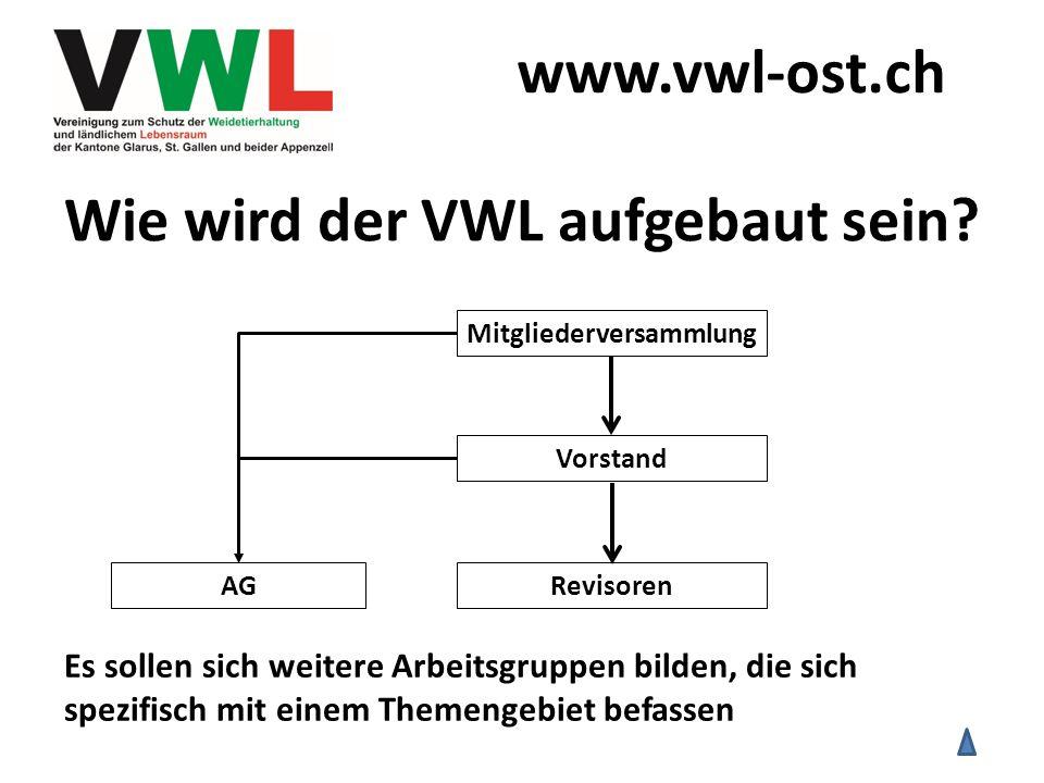 Wie wird der VWL aufgebaut sein? Vorstand RevisorenAG Mitgliederversammlung Es sollen sich weitere Arbeitsgruppen bilden, die sich spezifisch mit eine