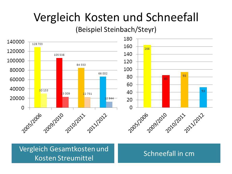 Vergleich Kosten und Schneefall (Beispiel Steinbach/Steyr) Kosten des Winterdienstes Schneefall in cm Vergleich Gesamtkosten und Kosten Streumittel
