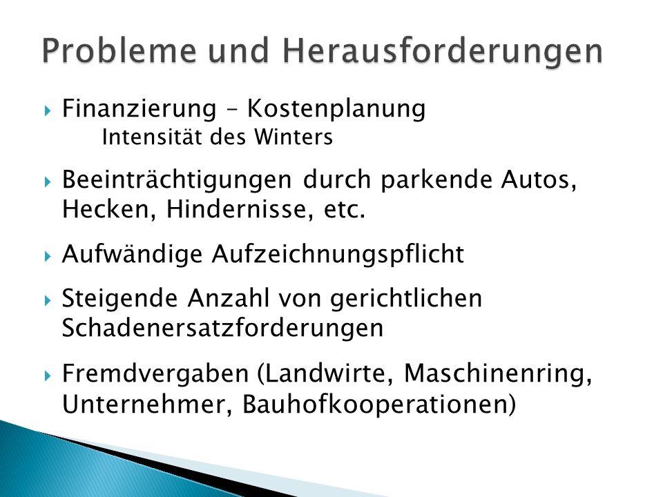  Finanzierung – Kostenplanung Intensität des Winters  Beeinträchtigungen durch parkende Autos, Hecken, Hindernisse, etc.