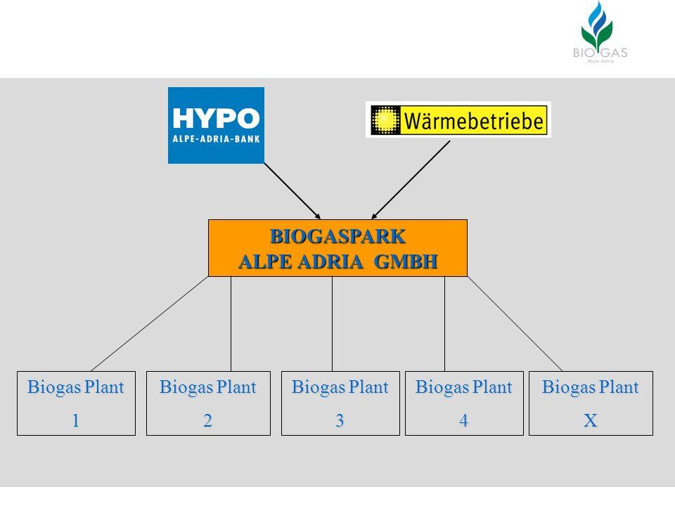 BIOGASPARK ALPE ADRIA GMBH Biogas Plant 1 2 3 4 X