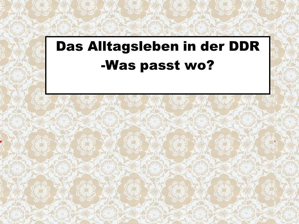 Das Alltagsleben in der DDR -Was passt wo